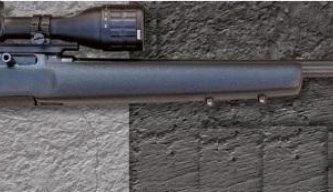 Expert Rimfire Rifle Reviews | Gun Mart