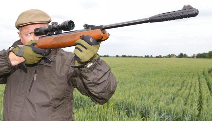 Webley Mosguito Express Airgun Pellets .22