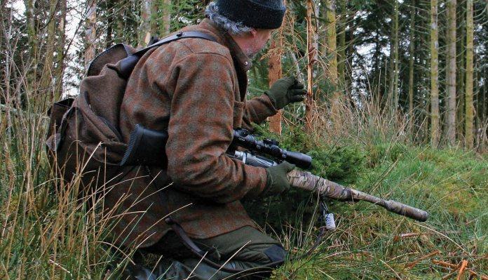 8e4fd38290187 Hunting story: Roe deer stalking | Deer Stalking | Gun Mart