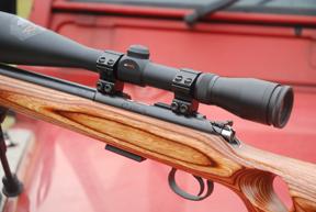 CZ 455 Thumbhole Varmint Carbine | Rimfire Rifle Reviews